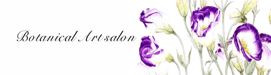 Botanical Art Salon